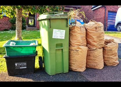Green Waste (Sally Morgan)